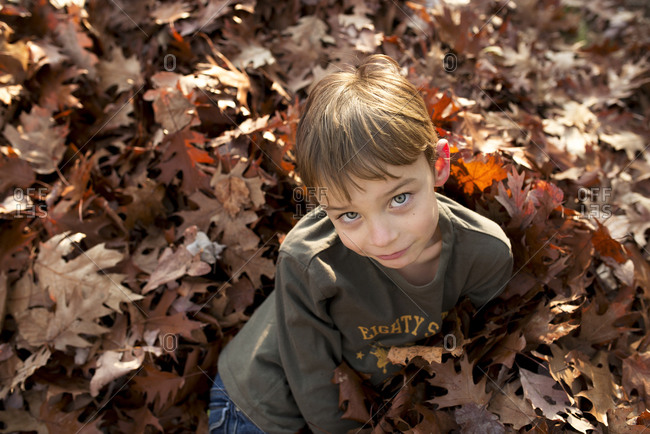 A boy lays in a pile of leaves