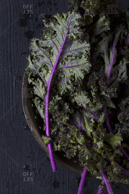 Overhead view of red kale leaves in a colander