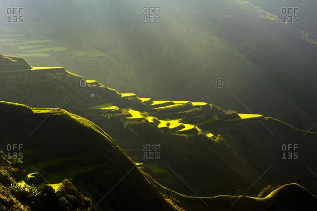 Rice terraces in Luzon's Cordillera Mountains