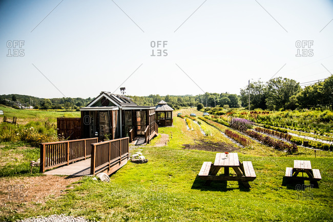 Scene of a farm with greenhouse