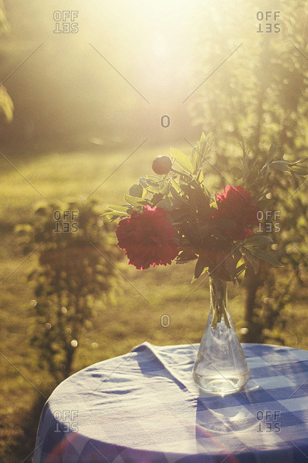 Flowers on table in garden with sunset