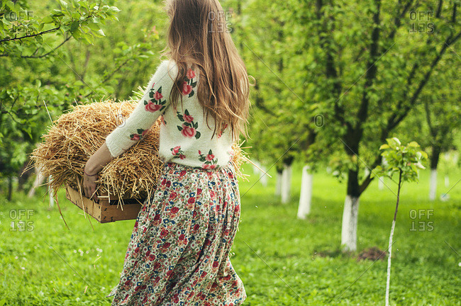 Rear view of girl carrying hay