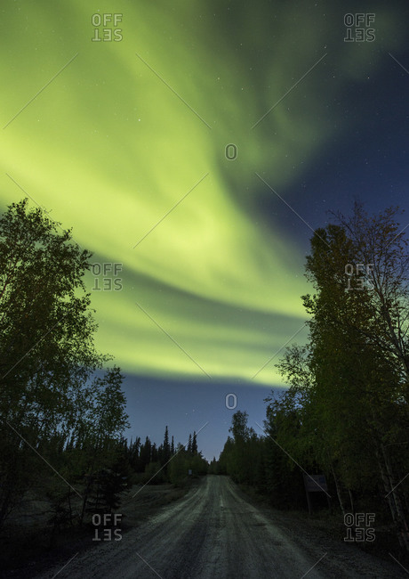 Northern lights glow above a rural road in the woods