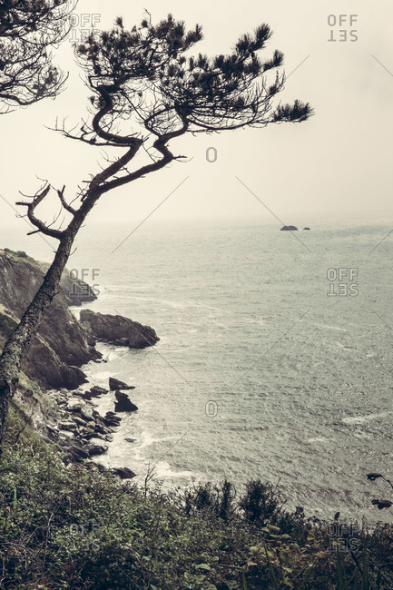 View of the south coast of Devon, UK, near Dartmouth