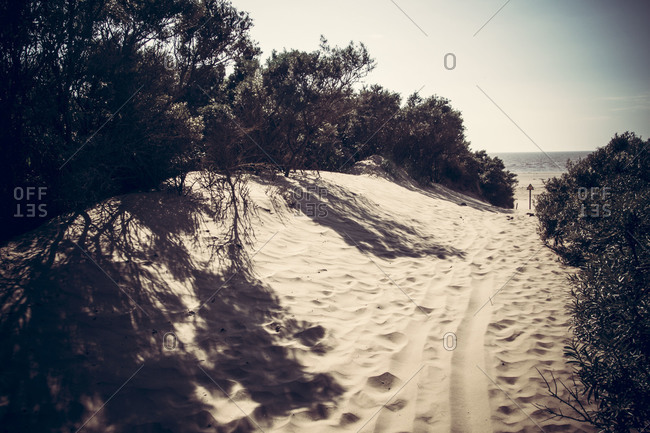 Sandy path to the beach, Burnham, Somerset, UK