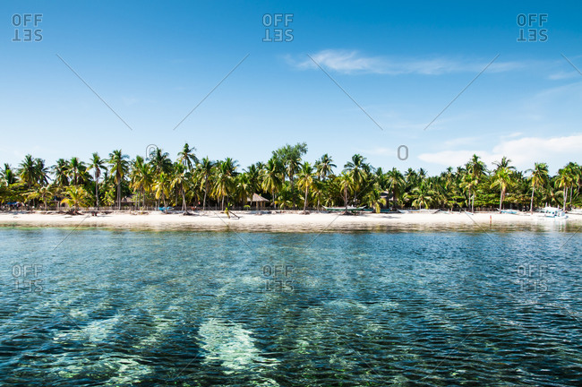 Paradise Beach with palm trees in the Philippines