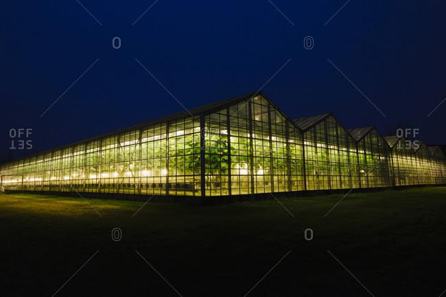 Illuminated greenhouse at night in Iceland