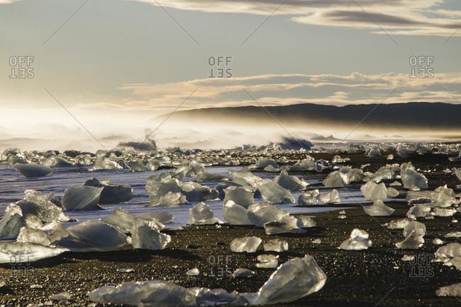 Chunks of glacial ice on a coast of Iceland