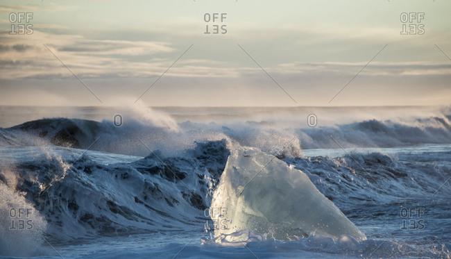 Melting glacial ice chunk at an Icelandic coast