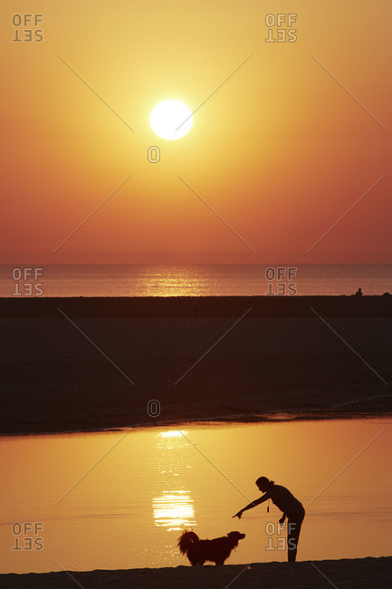 Woman and dog silhouetted on a beach at sunset