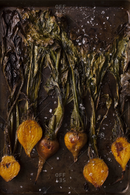 Yellow beets on a baking pan