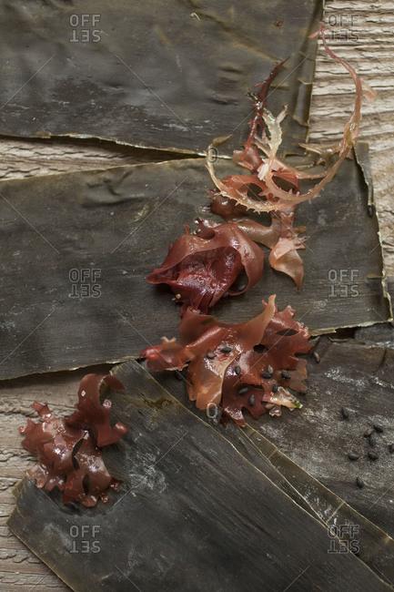 Seaweed with kombu and sesame seeds