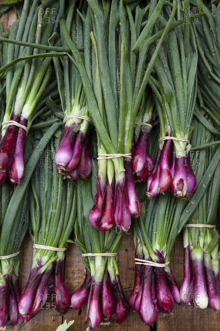 Bunches of red onions at a farmer's market