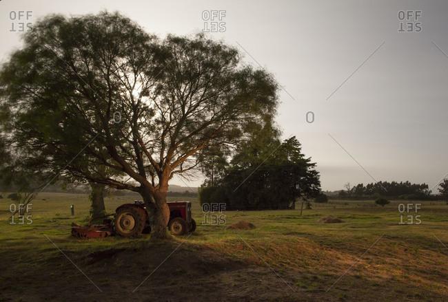 Tractor parking under a tree in rural Uruguay