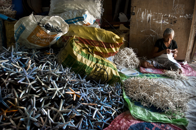 Olango Island, Philippines - June 5, 2011: A woman processing thousands of starfish