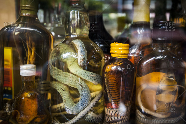 Rice wine infused with snakes