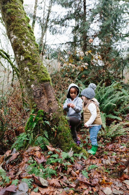 Two young girls examine a moss-covered tree in a misty forest