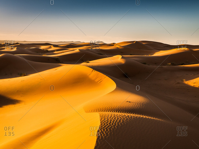 Endless Sand Dunes in the Moroccan Desert after Sunrise