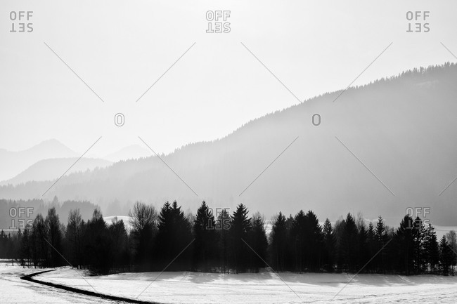 Foggy winter landscape in Hinterglemm, Austria