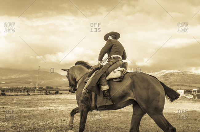 A gaucho rides a horse through a field