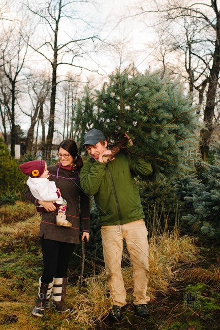 Family buying a Christmas tree at a pick-your-own farm