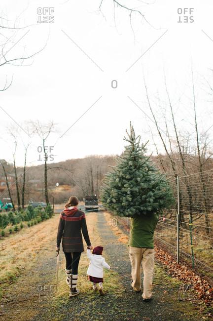 Family taking home their freshly cut Christmas tree