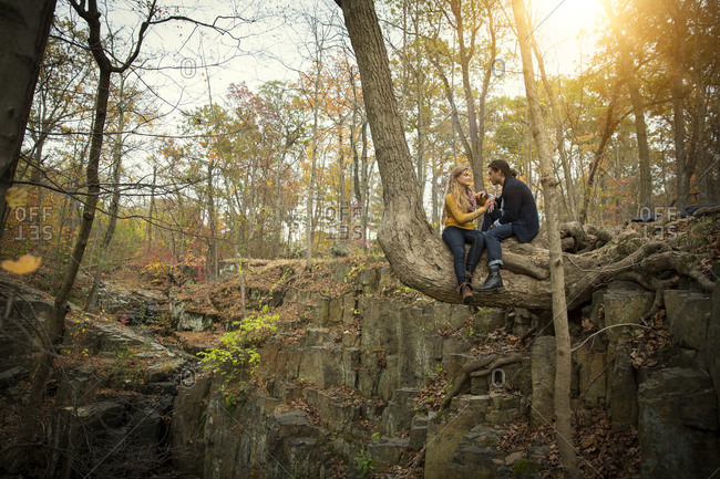 A couple sits on a bent tree trunk