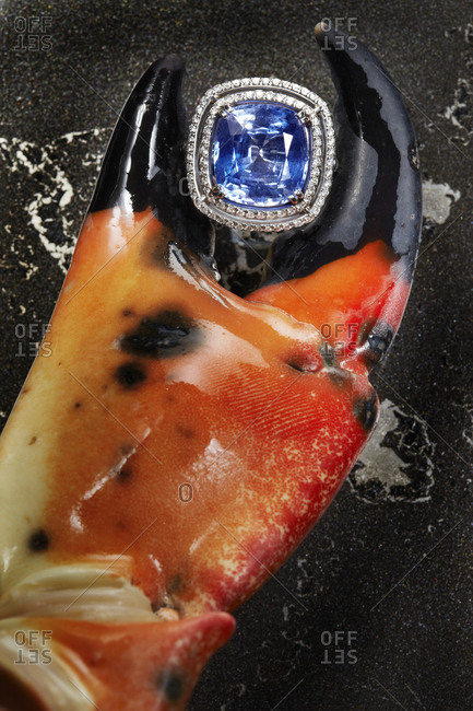 Ring with lobster claw