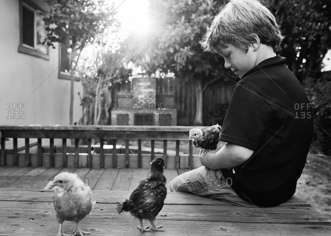 Boy holding chicken sitting on a bench