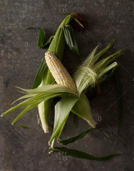 Close up of corn cobs