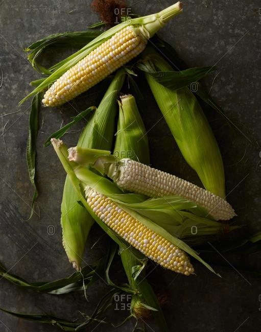 Pile of corn cobs