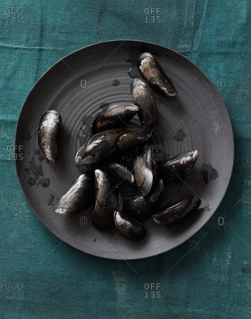 Raw black mussels on a plate