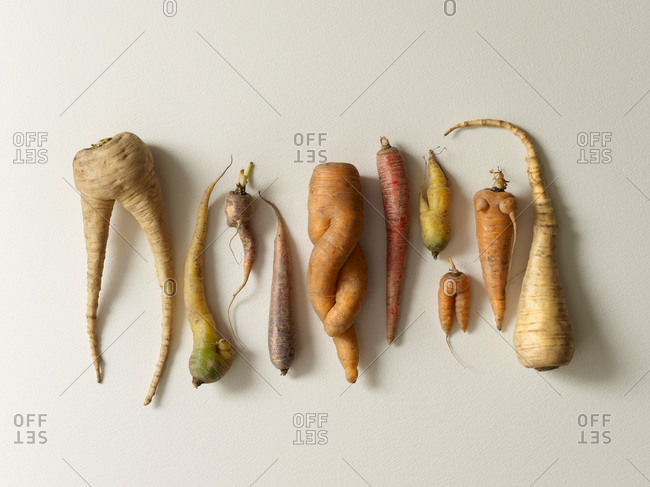 Variety of root vegetables