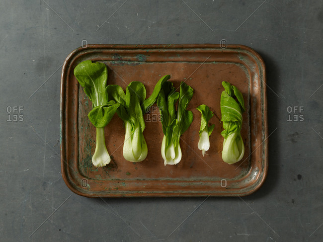 Chinese cabbage in a row on a copper tray