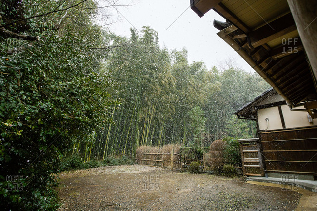 House near bamboo forest in Japan