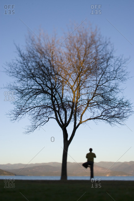 Man in tree pose next to lone tree
