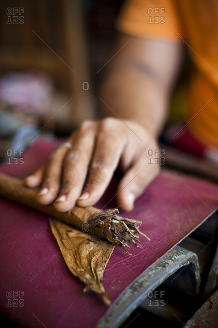 A hand rolls fresh cigars at a shop in Las Terrenas