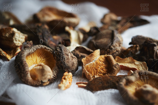 Dried mushrooms on cheesecloth