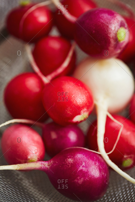 Red radishes with one white radish