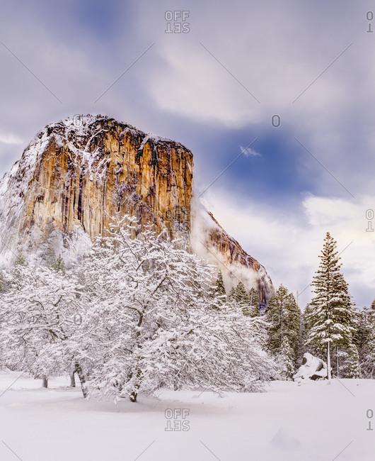 El Capitan and fresh snow, Yosemite National Park