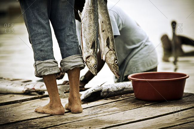 Man with rolled up pants holds fish on dock