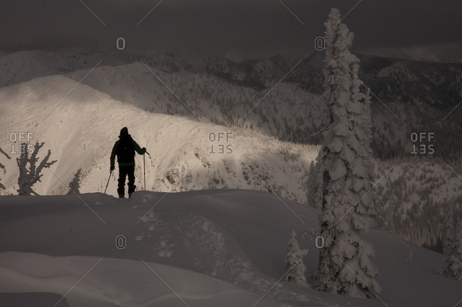 Silhouette of a man ski touring in the backcountry with frosted trees in the foreground in Nelson, British Columbia, Canada.