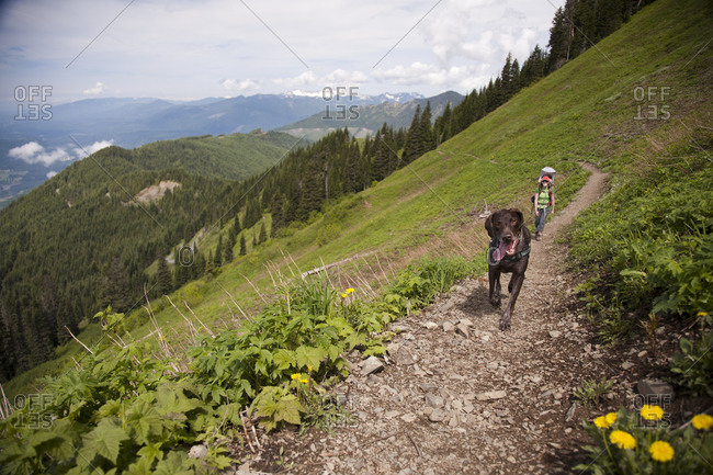 A woman carrying an infant hiking in the mountains with a German Shorthair Pointer dog.