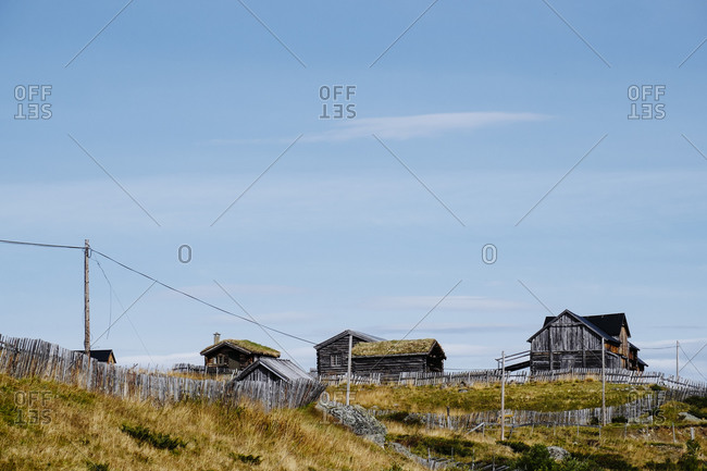 Traditional Norwegian houses on grassy hill