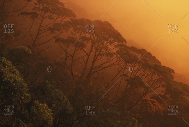 Sunset sweeps over a steep mountainside on Grande Terre, New Caledonia