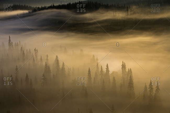 Morning mist as seen from the Paahkanankallio Overlook in Oulanka National Park, Finland
