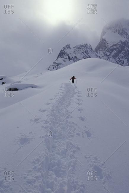 Skier in Bugaboo Glacier Provinvial Park, British Columbia, Canada