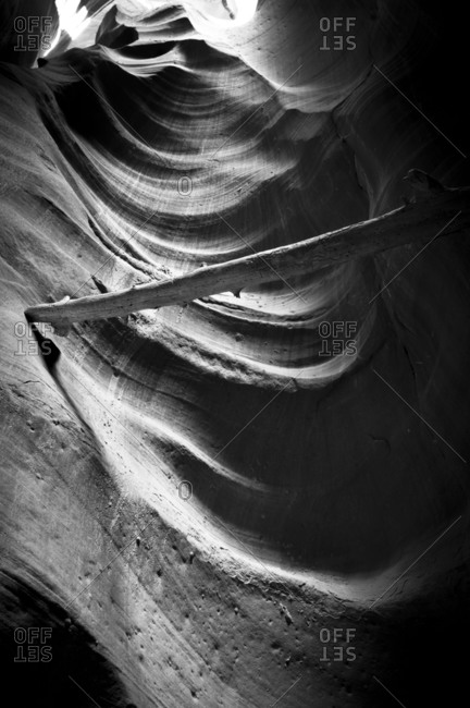 A log in a canyon in Antelope Canyon, Page, Arizona, USA