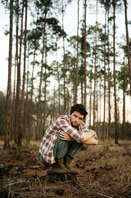 Young man crouching on a stump in a forest