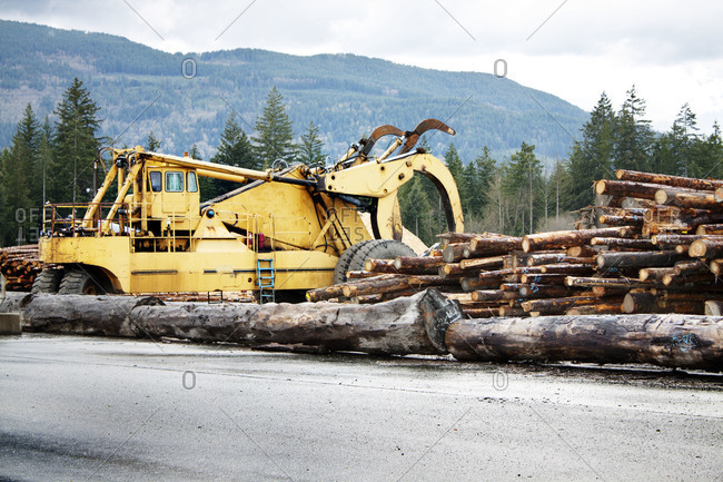 Logging truck at a saw mill in Vancouver, Canada